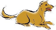 Click here for more details on Dog in 2012