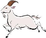 Chinese animal Sheep-Goat (wei) 2012