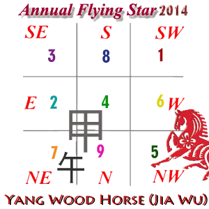 2014 Flying Star Xuan Kong